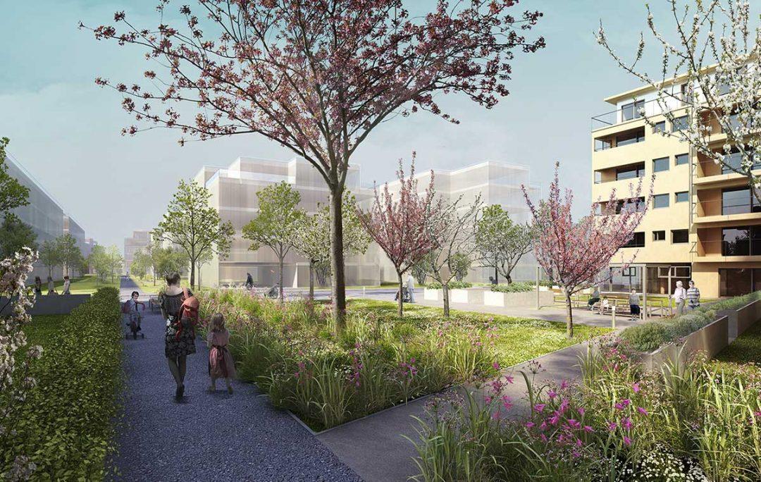 Wohnbauprojekt Schichtgründe Bauplatz 3b, Wien